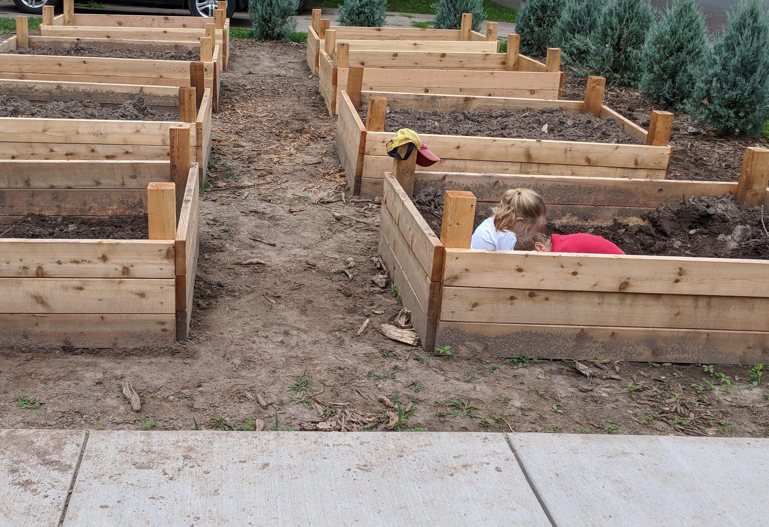 Building Raised Bed Veggie Gardens